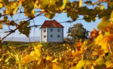 Vinogradarski dvorac Zlati Grič
