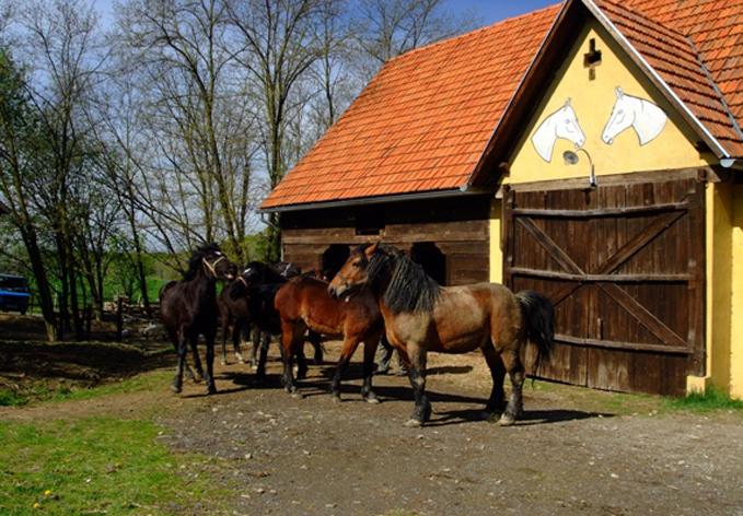 SelectBox_seoski_turizam_kezele_ivanicko_graberje_hrvatska_679x472px.jpg