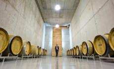 Vinski podrum Marof