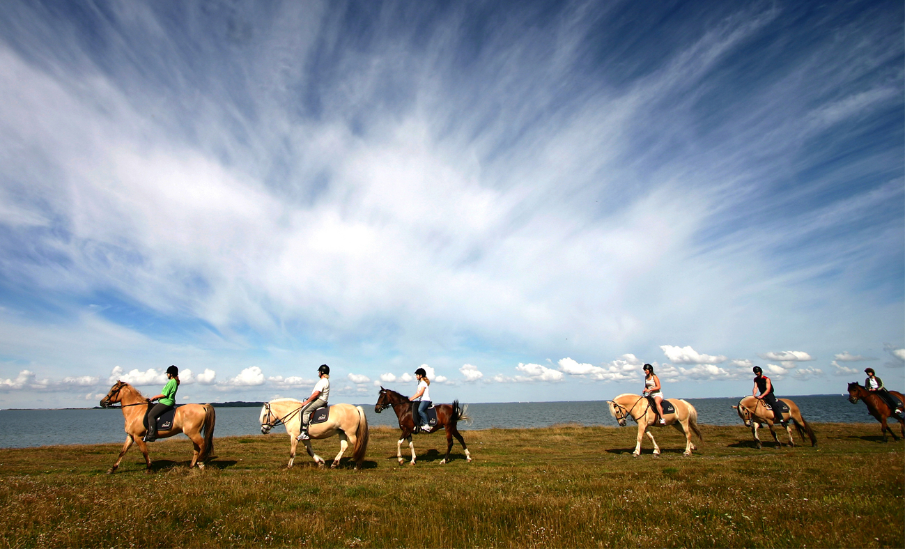 Jahanje konja na gospodarstvu Vrbnjak